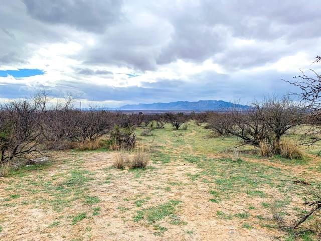 TBD 4 N Puesta Del Sol, St. David, AZ 85630 (#22006361) :: Tucson Property Executives