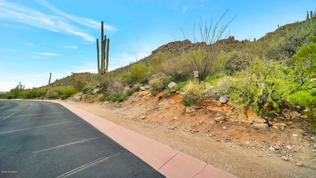 14043 N Horizon View Lane #206, Marana, AZ 85658 (#22006383) :: Long Realty - The Vallee Gold Team