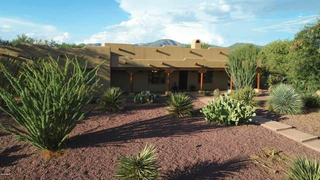 200 Willow Cross Circle, Nogales, AZ 85621 (#22006480) :: Long Realty - The Vallee Gold Team