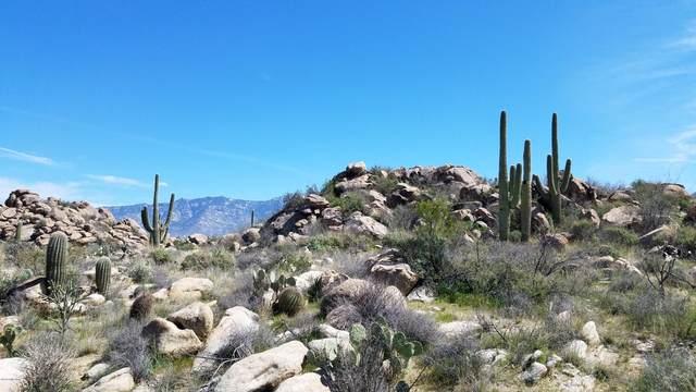 1459 Tortolita Mountain Circle #280, Oro Valley, AZ 85755 (#22006483) :: Long Realty - The Vallee Gold Team