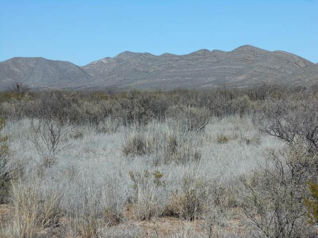 S Dinwiddie Ranch Road, Tombstone, AZ 85638 (#22007220) :: Long Realty - The Vallee Gold Team