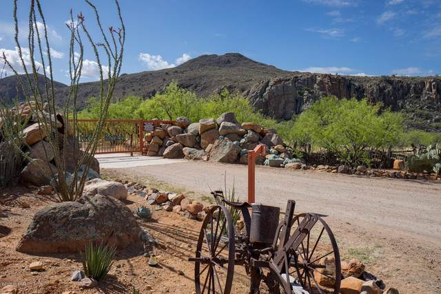 89 Salida Springs Way #140, Tubac, AZ 85646 (#22007270) :: Tucson Property Executives