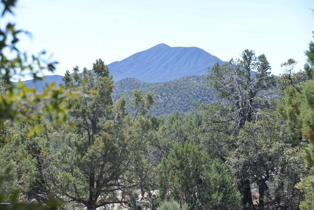 Off Fr4720 Road #0, Patagonia, AZ 85624 (#22007389) :: Long Realty - The Vallee Gold Team