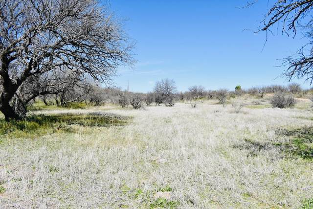 17306 4th Avenue #0, Arivaca, AZ 85601 (#22007468) :: Long Realty - The Vallee Gold Team