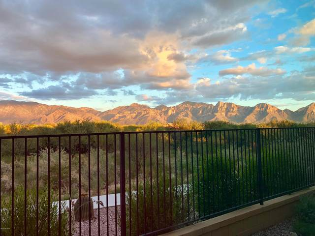 13559 N Trailing Indigo Court, Oro Valley, AZ 85755 (#22008108) :: Long Realty - The Vallee Gold Team