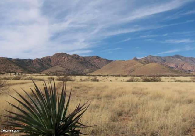 1.17 AC Towner And Desert Rd #13, Pearce, AZ 85625 (#22008214) :: Long Realty - The Vallee Gold Team