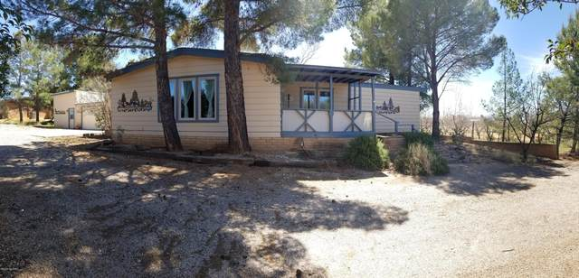 3387 W Mohawk Place, Benson, AZ 85602 (#22008275) :: Long Realty - The Vallee Gold Team