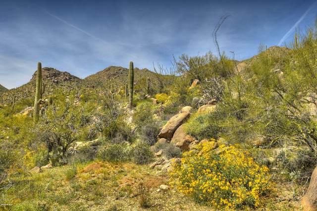 14891 N Sonora Vista Canyon Place #98, Marana, AZ 85658 (#22008331) :: Tucson Property Executives