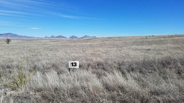 Lot 13 Rancho Oasis Rd #13, Sonoita, AZ 85637 (#22008345) :: Long Realty - The Vallee Gold Team