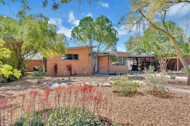 1146 E Knox Drive, Tucson, AZ 85719 (#22008432) :: Long Realty - The Vallee Gold Team