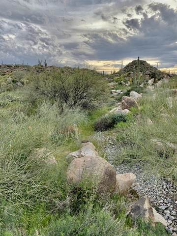 863 W Granite Gorge Drive W #328, Oro Valley, AZ 85755 (#22008479) :: Long Realty - The Vallee Gold Team