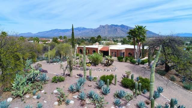 8336 N Rose Marie Lane, Tucson, AZ 85742 (#22008601) :: Long Realty - The Vallee Gold Team