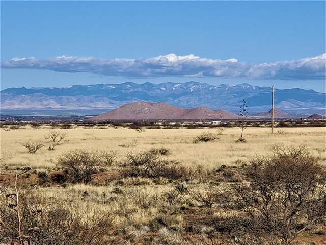 10 AC W Eagle Wings Road, Pearce, AZ 85625 (#22008642) :: Long Realty - The Vallee Gold Team