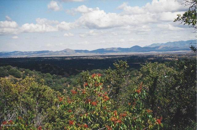 Pocahontas Road #7, Patagonia, AZ 85624 (MLS #22008728) :: The Property Partners at eXp Realty