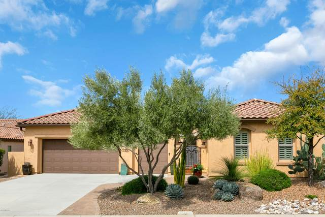 31834 S Misty Basin Road, Oracle, AZ 85623 (MLS #22008923) :: The Property Partners at eXp Realty