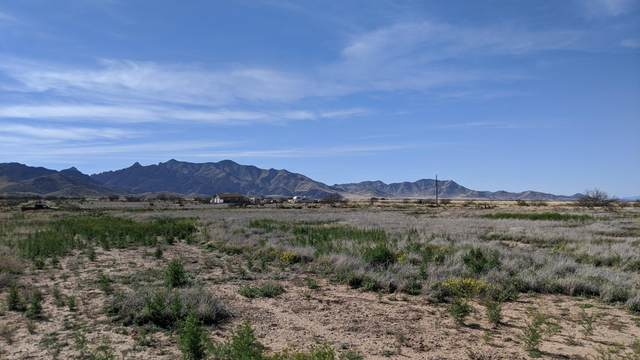 1 Lot (.83 Ac)Central & Highland Road Lot 19, Pearce, AZ 85625 (#22008946) :: Long Realty - The Vallee Gold Team