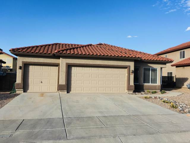 8929 E Rainsage Street, Tucson, AZ 85747 (#22008956) :: The Josh Berkley Team