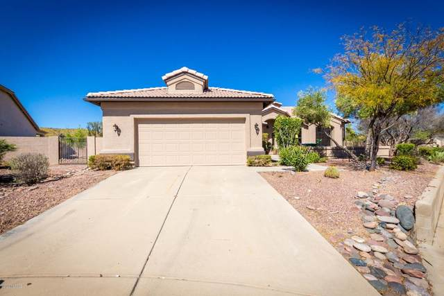 63950 E Greenbelt Lane, Tucson, AZ 85739 (#22009181) :: Long Realty - The Vallee Gold Team