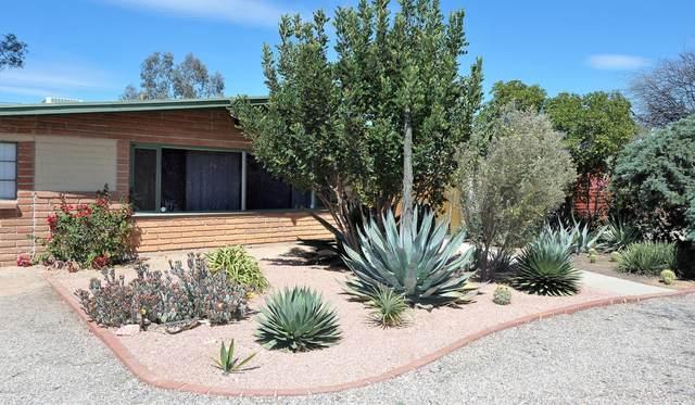 5837 E 2nd Street, Tucson, AZ 85711 (#22009201) :: The Josh Berkley Team