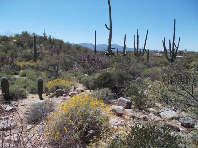 1496 E Canyon Spring Court #233, Tucson, AZ 85718 (#22009308) :: The Local Real Estate Group | Realty Executives