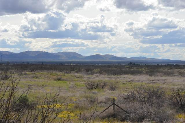 TBD Us Highway 191, Mc Neal, AZ 85617 (MLS #22009384) :: The Property Partners at eXp Realty