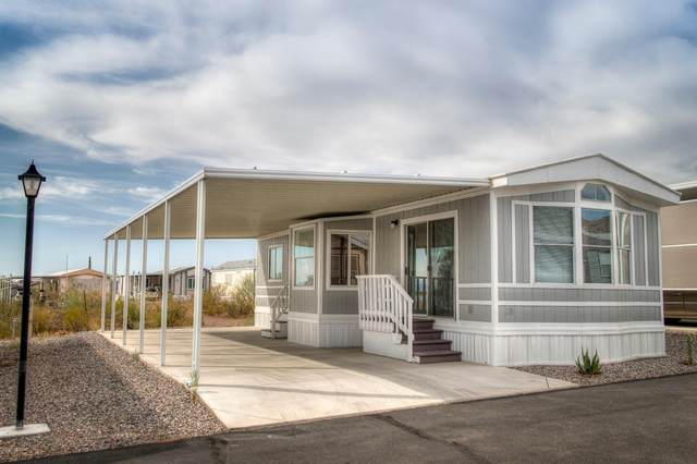 17065 E Peak Lane #219, Picacho, AZ 85141 (MLS #22009476) :: The Property Partners at eXp Realty
