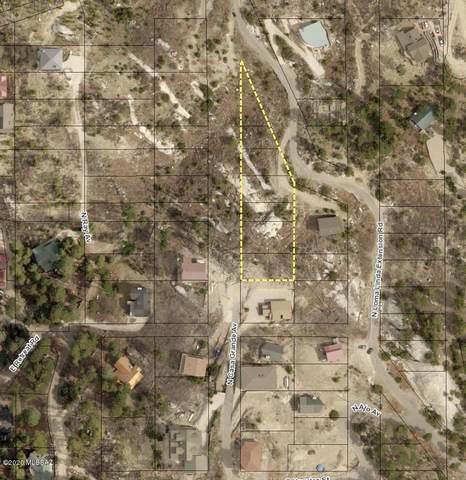 12789 N Loma Linda Ext Road #2, Mt. Lemmon, AZ 85619 (#22009870) :: The Local Real Estate Group | Realty Executives