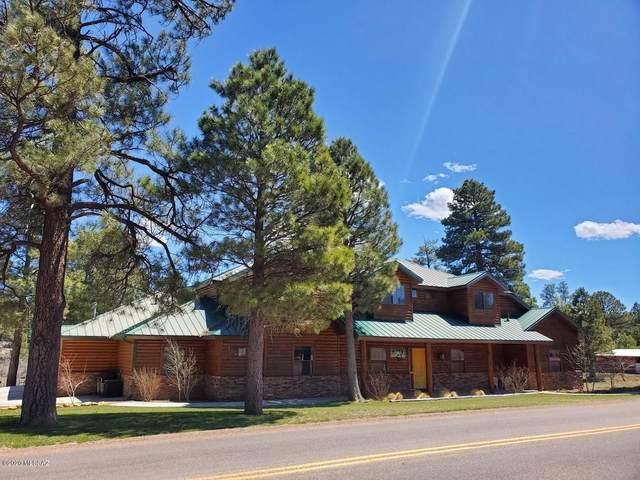 2913 Buckskin Canyon Road, Heber-Overgaard, AZ 85933 (#22009906) :: Long Realty - The Vallee Gold Team