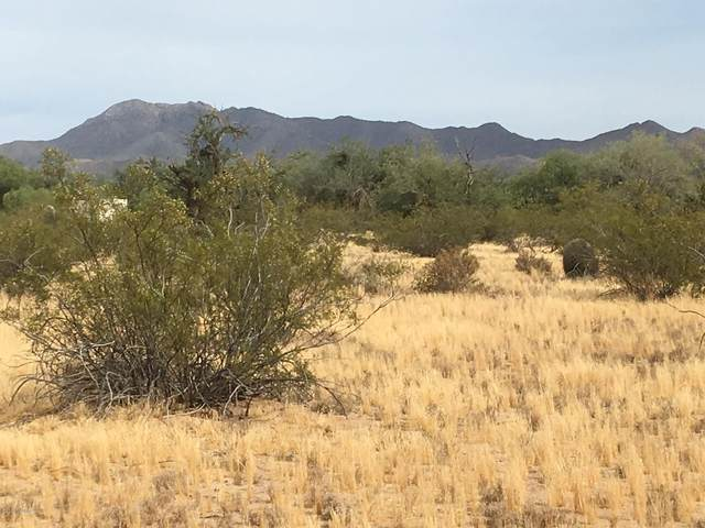 12780 W Crystal Rose Lane Lot2, Tucson, AZ 85743 (#22009916) :: Long Realty - The Vallee Gold Team