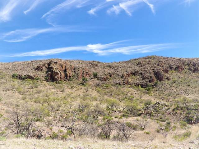 Tbd Grosvenor Loop #127, Rio Rico, AZ 85648 (#22010334) :: Tucson Property Executives