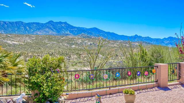 38183 S Canada Del Oro Drive, Tucson, AZ 85739 (#22011184) :: The Josh Berkley Team