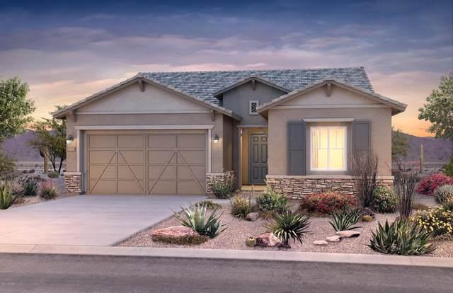 729 E Barun Valley Place, Oro Valley, AZ 85755 (#22011364) :: Long Realty - The Vallee Gold Team