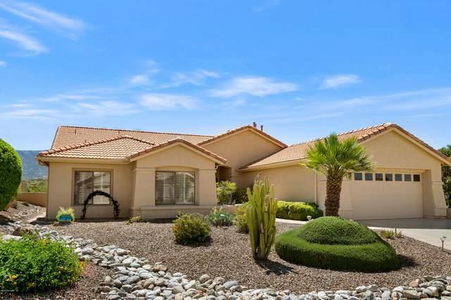 38305 S Skyline Drive, Tucson, AZ 85739 (#22011373) :: The Josh Berkley Team