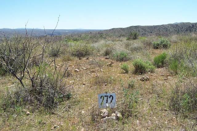 Lot 272 End Of The Trail Road, Willcox, AZ 85643 (#22011451) :: The Josh Berkley Team