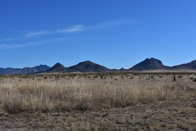 00 Elgin Road, Elgin, AZ 85611 (#22011454) :: Long Realty Company