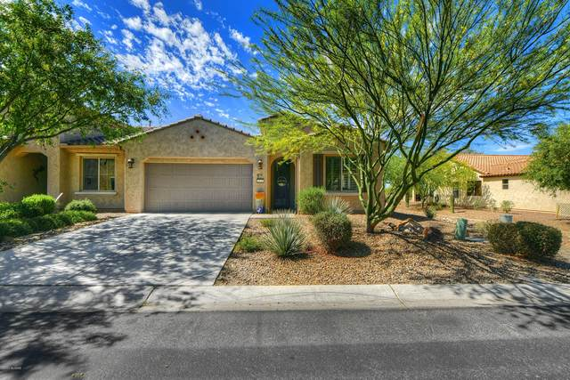 1029 N Broken Hills Drive, Green Valley, AZ 85614 (#22011508) :: Long Realty - The Vallee Gold Team