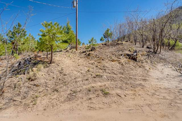 11172 Miami Street #0, Mt. Lemmon, AZ 85619 (#22011593) :: eXp Realty