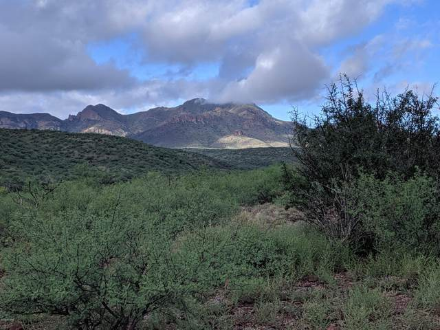 110 Alegria Road Na, Tubac, AZ 85646 (#22011642) :: Long Realty - The Vallee Gold Team