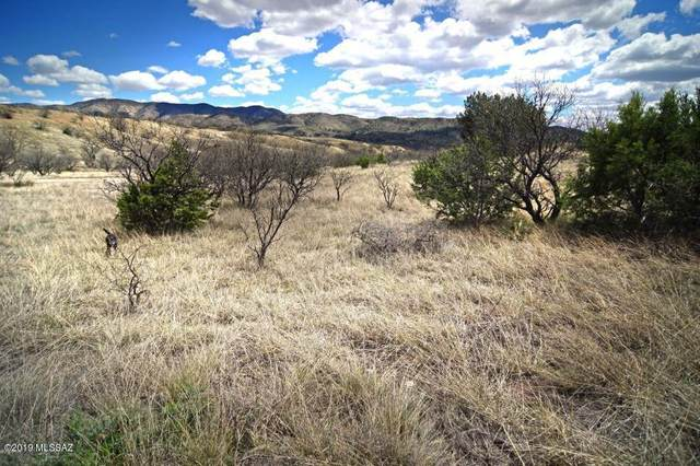 tbd Tanglehead Lane #35, Patagonia, AZ 85624 (#22011868) :: Long Realty - The Vallee Gold Team