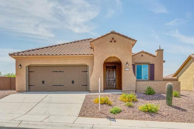 14104 N Del Webb Trail, Marana, AZ 85658 (#22011914) :: Luxury Group - Realty Executives Arizona Properties