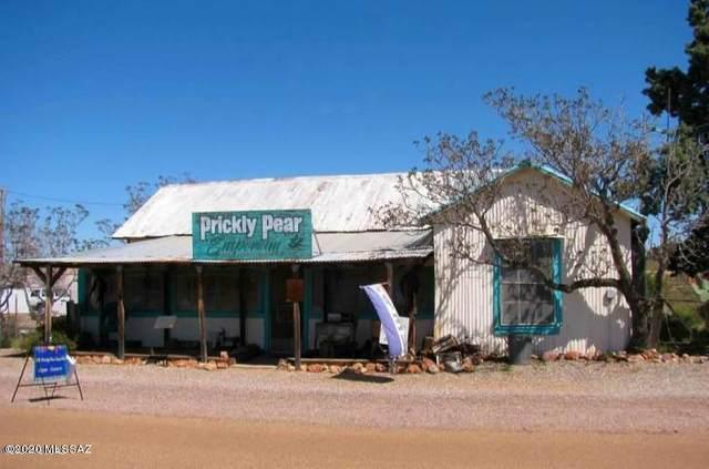 966 Ghost Town Trail, Pearce, AZ 85625 (#22011971) :: The Josh Berkley Team