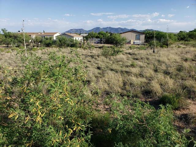 0 W Cactus Bloosom Drive #428, Benson, AZ 85602 (#22012008) :: Realty Executives Tucson Elite