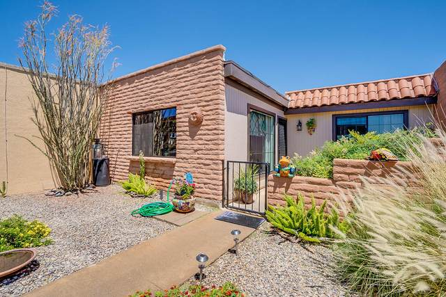 348 W Camino Del Sonador, Green Valley, AZ 85614 (#22012129) :: Long Realty - The Vallee Gold Team