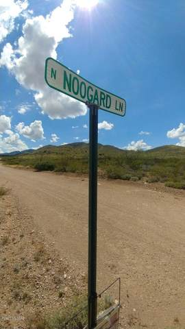 TBD N Noogard Lane N, Cochise, AZ 85606 (#22012224) :: Realty Executives Tucson Elite