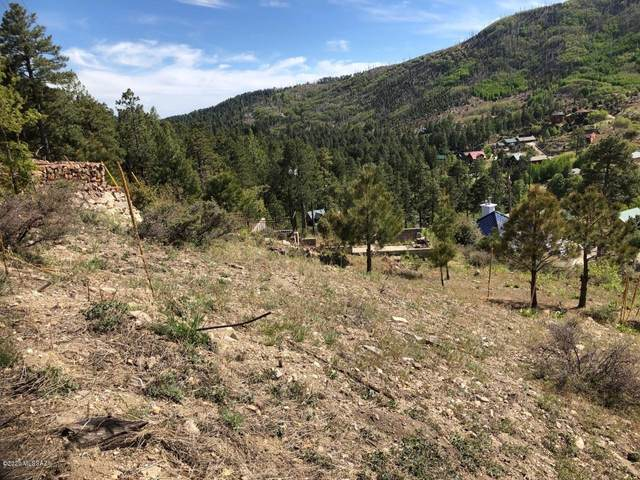 12949 N Loma Linda Ext. Road #4, Mt. Lemmon, AZ 85619 (#22012299) :: eXp Realty