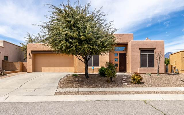 1323 N Golden Palomino Place, Tucson, AZ 85715 (#22012335) :: Long Realty - The Vallee Gold Team