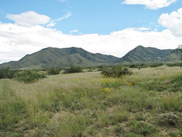 39.73 Acre E Silkwind Boulevard, Dragoon, AZ 85609 (#22012543) :: Realty Executives Tucson Elite