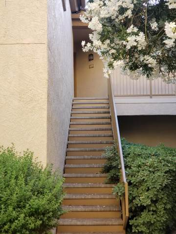 2550 E River Road #14203, Tucson, AZ 85718 (#22012739) :: Long Realty - The Vallee Gold Team