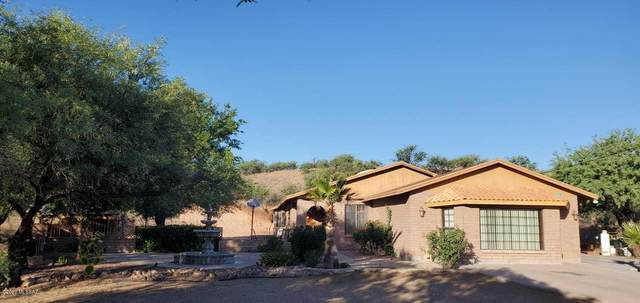 173 Nabo Court, Rio Rico, AZ 85648 (#22012774) :: Long Realty - The Vallee Gold Team