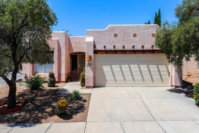 10391 E Thunderbolt Drive, Tucson, AZ 85748 (#22012775) :: The Local Real Estate Group | Realty Executives